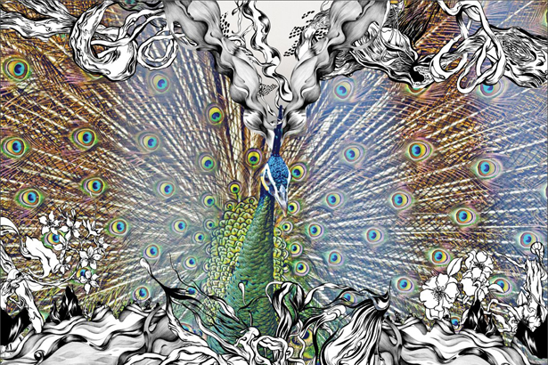 Pomme Chan: Peacock - A new piece from Pomme Chan, the second time she has collaborated with Sixtysix Visual . This gorgeous…