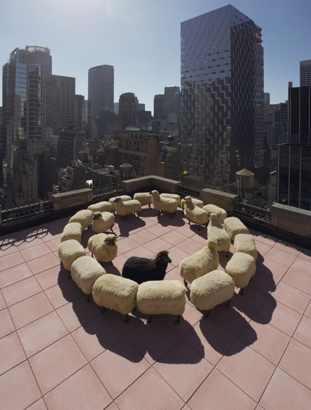Peter Funch: Lalanne Sheep - Peter Funchrecently shot François-Xavier Lalanne'sfamed sheep for Christie'sMagazine. Using various locations at the Christie's offices in Rockerfeller…