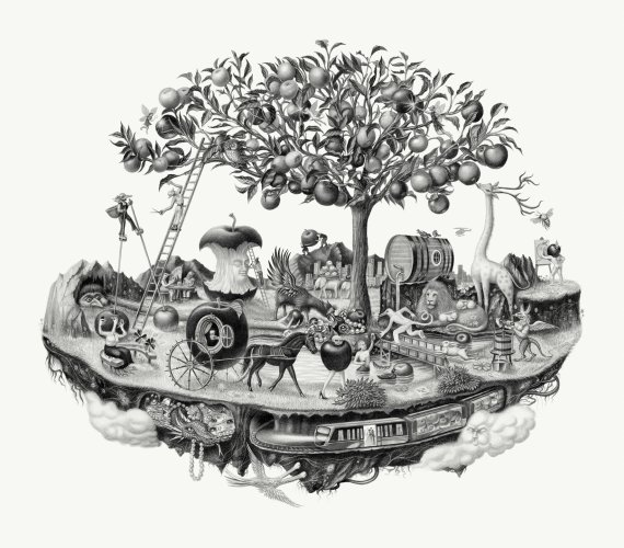 Armando Veve : Windfall Cider -   This beautiful illustration was created by artist Armando Veve for Windfall Cider.  We asked Armando to tell us a…